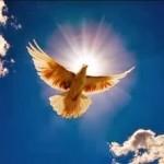 Fraternidade, fundamento e caminho para a paz