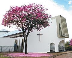 Paróquia Nossa Senhora do Sagrado Coração (Redentora)
