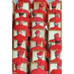 Papa anuncia 17 novos Cardeais