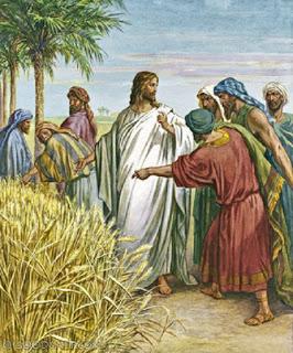 ESPIGAS Y JESUS SABADO
