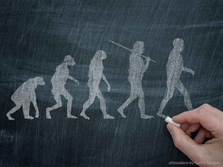 O que a Igreja diz sobre a teoria da evolução?