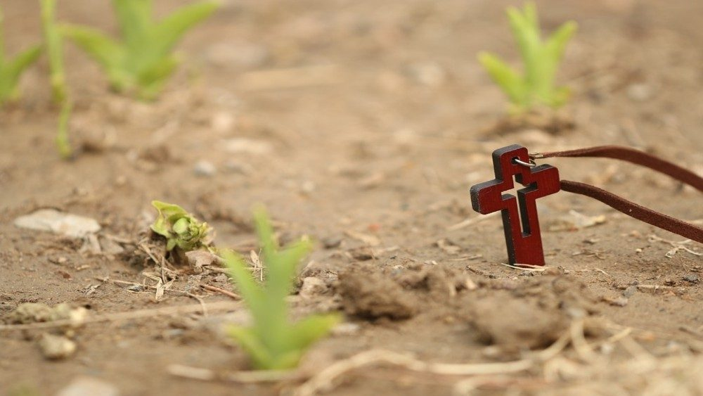 29 missionários assassinados em 2019